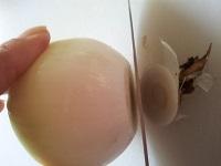 新玉ねぎの下の部分を切る。