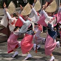 阿波踊りを本場で踊りたい。観光客が阿波踊りに参加するには?